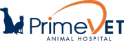 Veterinarians and Staff at PrimeVet